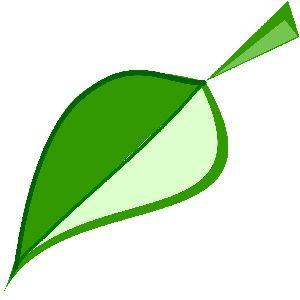 Sustainable wood badge